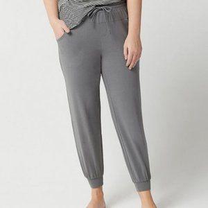 AnyBody Cozy Knit Jogger Pants w/ Seaming Detail